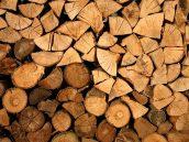 prodej palivového dřeva