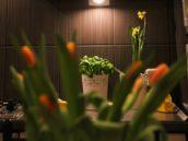 keramické květináče