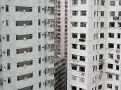 Plastová nebo dřevěná okna