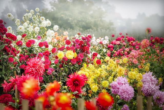 Zahradní kultivátor